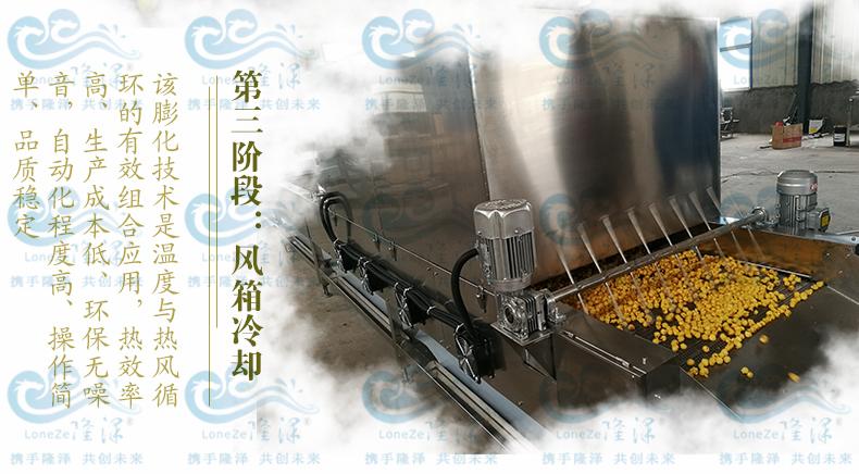 爆裂玉米球形爆米花机 隆泽厂家直销 爆米花生产线 大型爆米花机示例图1