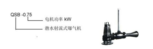 南京K7娱乐    QSB7.5射流曝气机    <strong><strong><strong><strong><strong><strong>自耦式射流曝气机</strong></strong></strong></strong></strong></strong>价格     单相射流曝气机   潜水射流式曝气机厂家示例图1