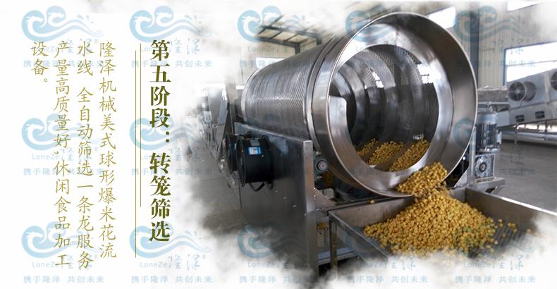 爆裂玉米球形爆米花机 隆泽厂家直销 爆米花生产线 大型爆米花机示例图7