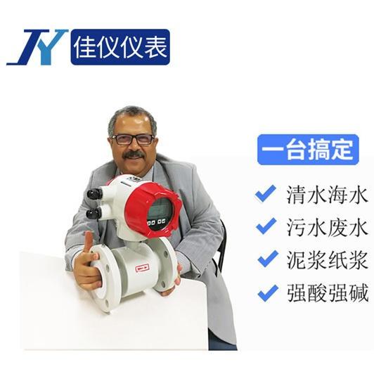 LDG-JY 高精度電磁流量計 化工液體/雙氧水/酸堿液