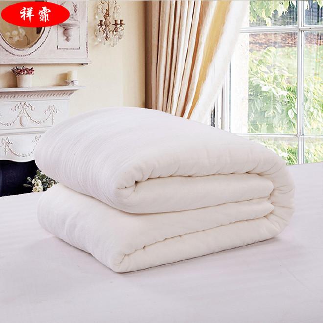 厂家直销新款新疆纯棉长绒棉被 家纺棉被被芯 礼品春秋被子批发图片