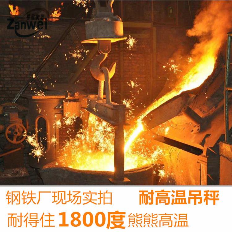 耐高温吊秤 浇铸冶金行业隔热电子吊钩秤 称铁水包吊磅示例图4