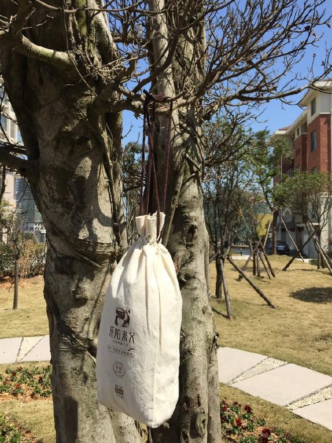 棉布束口袋拉绳 大米袋 图案制定 厂家批发布类包装袋图片
