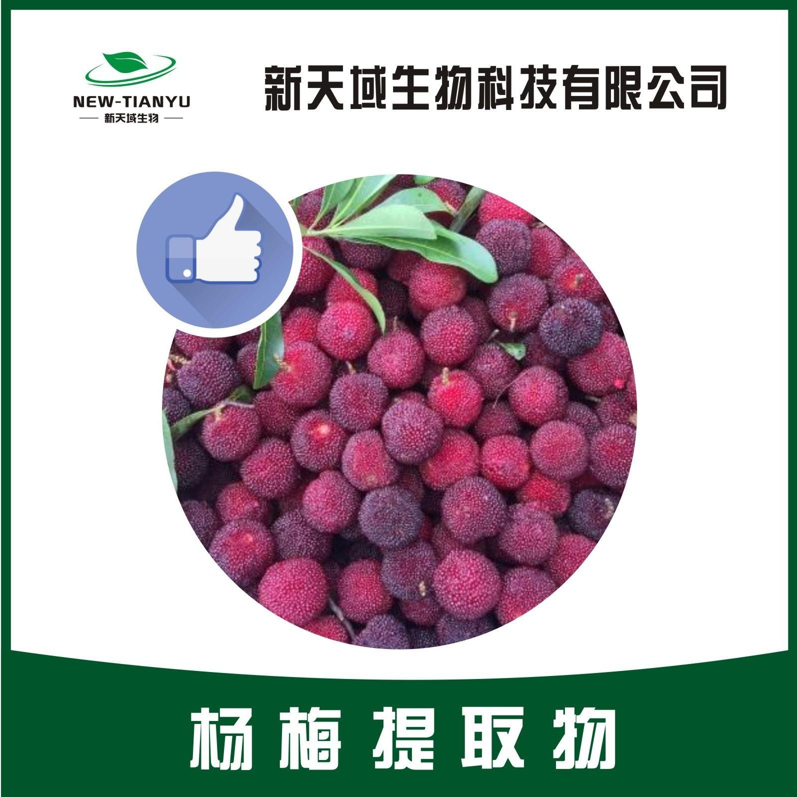 陕西新天域生物 现货供应 杨梅提取物 杨梅浓缩喷雾干燥粉