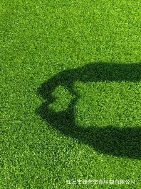 幼兒園專用彩虹跑道毯塑料人造草坪 戶外婚禮綠化草皮
