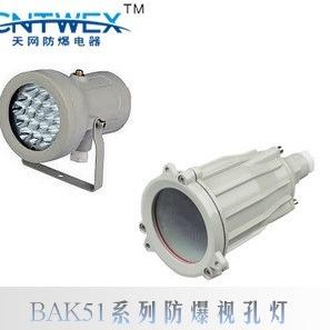 专业生产 BAK51-40系列防爆视孔灯,浙江乐清天网防爆厂家6.5折供应