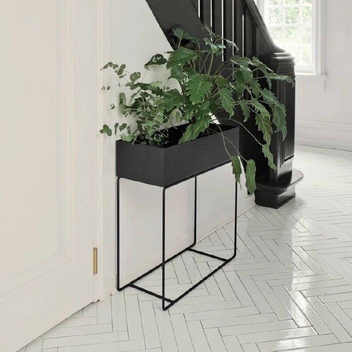 北欧简易白色绿萝花架 北欧铁艺花架置物架客厅落地式单层植物架图片