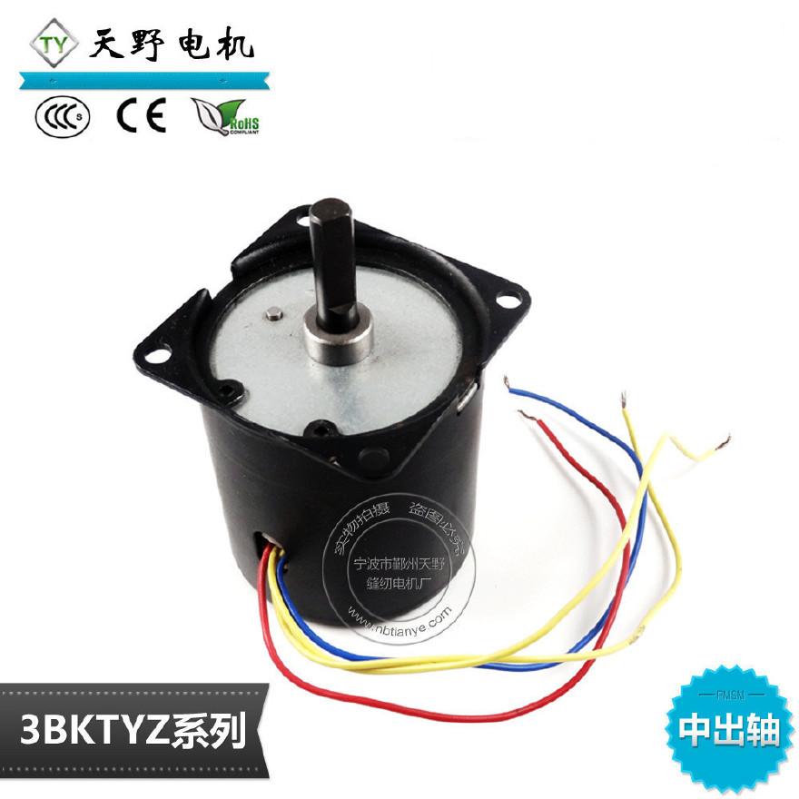 厂家直销微型电机 25W 40转永磁同步电机 精细工业级烤肉机电机图片