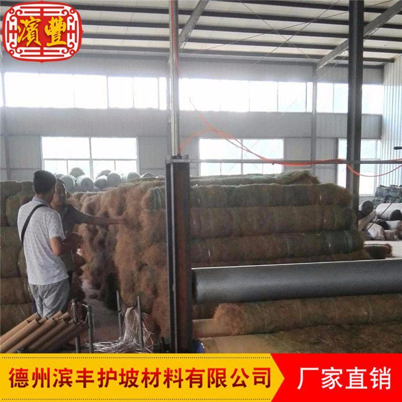滨丰生态毯 环保护坡 荒山治理 椰丝草毯 厂家直销示例图16