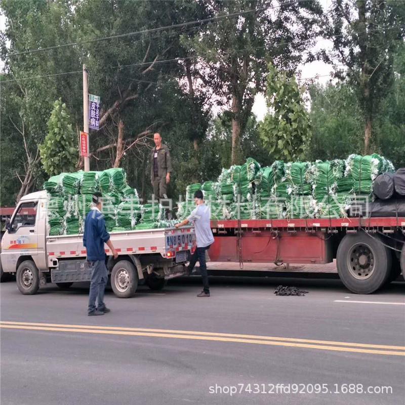植草袋厂家 滨丰护坡专用植生袋 广东草种植生袋 绿色护坡袋 环保绿化植生袋示例图14