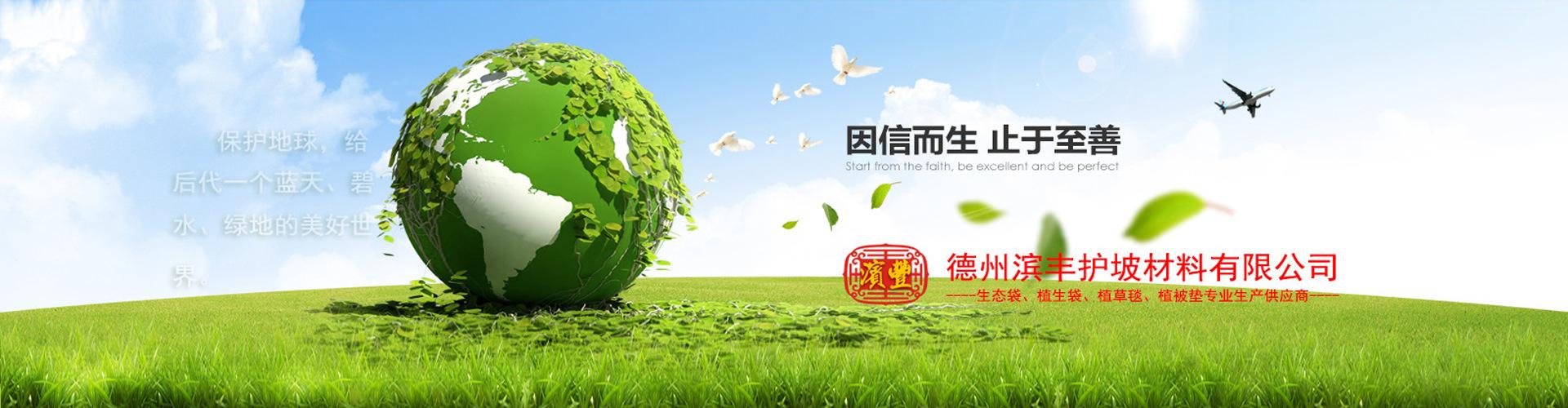 滨丰护坡 生态袋厂家直销护坡生态袋、绿色生态袋、植生袋、植草毯、植被垫示例图25