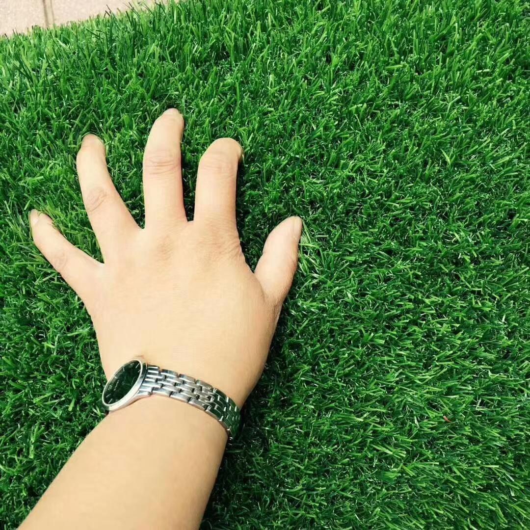 人造草坪廠家 運動人造草坪 運動人工草坪 加密仿真草坪圖片