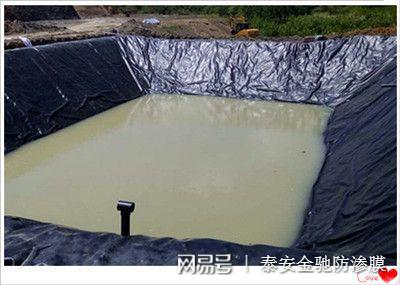 上海垃圾填埋场用高密度聚乙烯HDPE0.75mm防渗土工膜价格示例图4