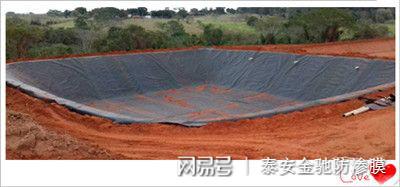 上海垃圾填埋场用高密度聚乙烯HDPE0.75mm防渗土工膜价格示例图5