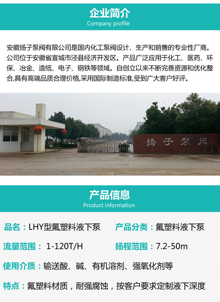 32LHY-20耐腐蚀液下泵 氟塑料液下泵 脱硫泵 脱硝泵 厂家直销示例图2