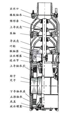 上海中球QSP25-17-2.2<strong><strong><strong><strong>喷泉潜水泵</strong></strong></strong></strong> 304不锈钢喷泉泵示例图1