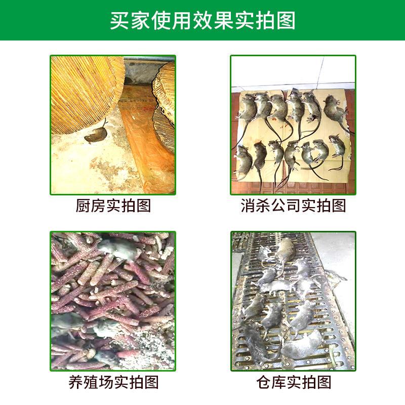 灭鼠追踪膏批发 灭鼠追踪膏厂家示例图9