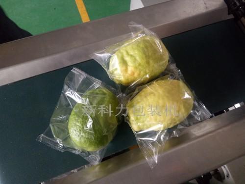 唐氏智能内江柠檬包装机 自动柠檬包装机 新科力柠檬包装机  成都花袋柠檬包装机示例图2