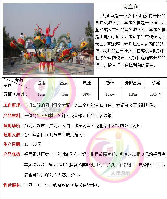 专业定制新款儿童游乐设备章鱼陀螺大洋游乐供应大型章鱼陀螺项目大章鱼,章鱼飞车打造2020游乐设备航母!示例图3