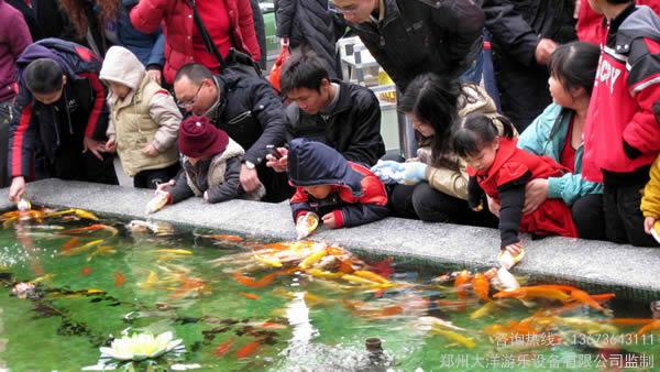 赚钱快的吃奶鱼游乐设施 适合室内的玻璃鱼池养吃奶鱼就像景观一样漂亮 生意很好 们都喜欢吃奶鱼游乐设备 郑州大洋游乐设备示例图5