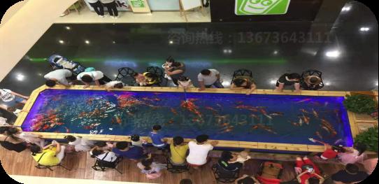 赚钱快的吃奶鱼游乐设施,适合室内的玻璃鱼池养吃奶鱼就像景观一样漂亮,生意很好孩子们都喜欢吃奶鱼游乐设备,郑州大洋游乐设备示例图8