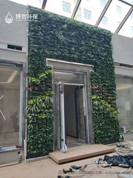 模块式种植盒 垂直绿化 立体绿化 生态植物墙,智能植物墙,植物墙种植盒,博智环保示例图3