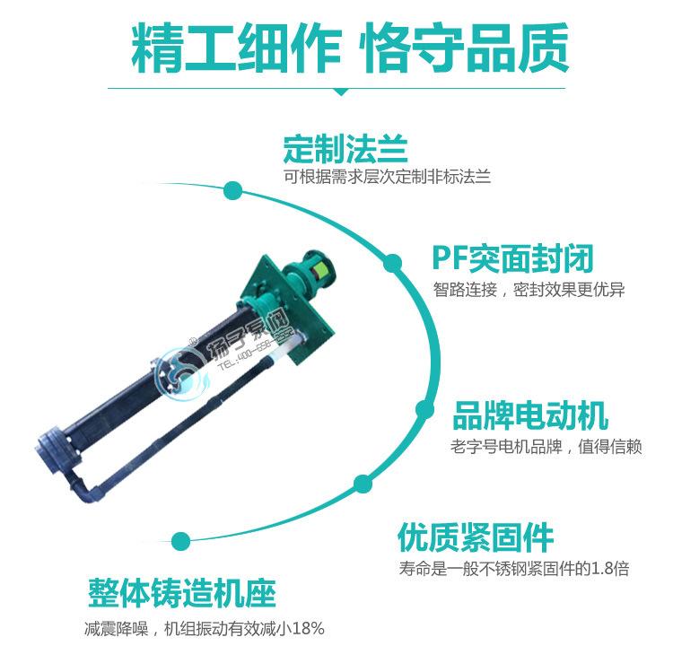 32LHY-20耐腐蚀液下泵 氟塑料液下泵 脱硫泵 脱硝泵 厂家直销示例图9