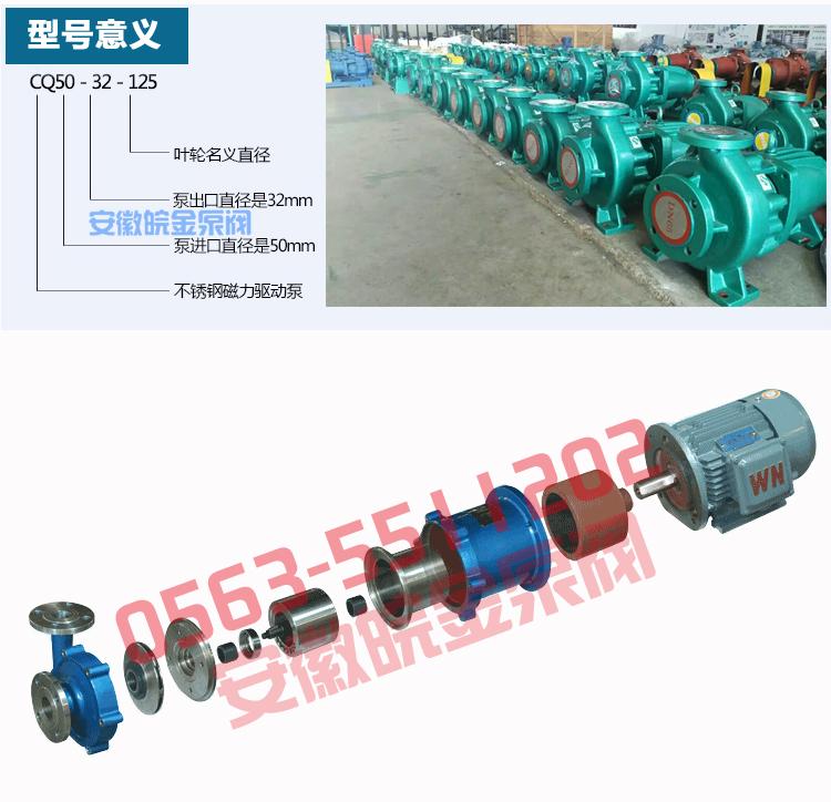 CQB磁力離心泵 不銹鋼磁力泵品牌 化工磁力驅動泵 304.316L磁力管道泵生產示例圖4