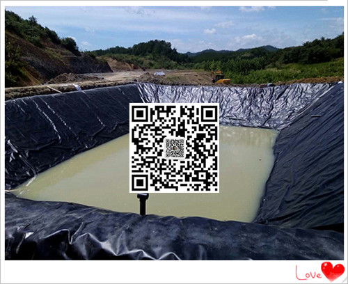 黑膜沼气池防渗膜厂家找泰安防渗膜哥聂圣珍示例图7