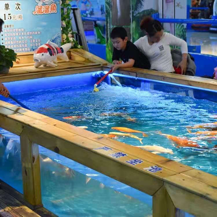 吃奶鱼和旋转秋千鱼升级进化活鱼 们玩的开心吃奶鱼也叫长寿鱼喂奶鱼,娃娃鱼或者 鱼,溜溜鱼,奶嘴鱼示例图25