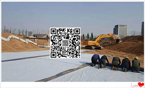 山东天然纳基覆膜膨润土防水毯5500克幅宽6米长度30米一件180平米厂家直销示例图2