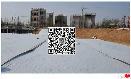 山东天然纳基覆膜膨润土防水毯5500克幅宽6米长度30米一件180平米厂家直销示例图4
