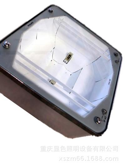 飞利浦DBP300 150W嵌入式金安全卤灯油站灯 mini300原厂系列 IP65