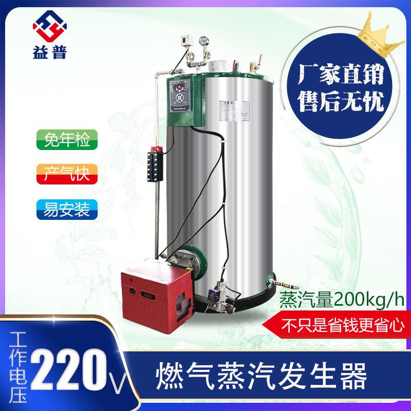廠家直銷LP-RQX-0.05燃氣蒸汽發生器  蒸汽清洗行業專用   全自動控制  一鍵式操作