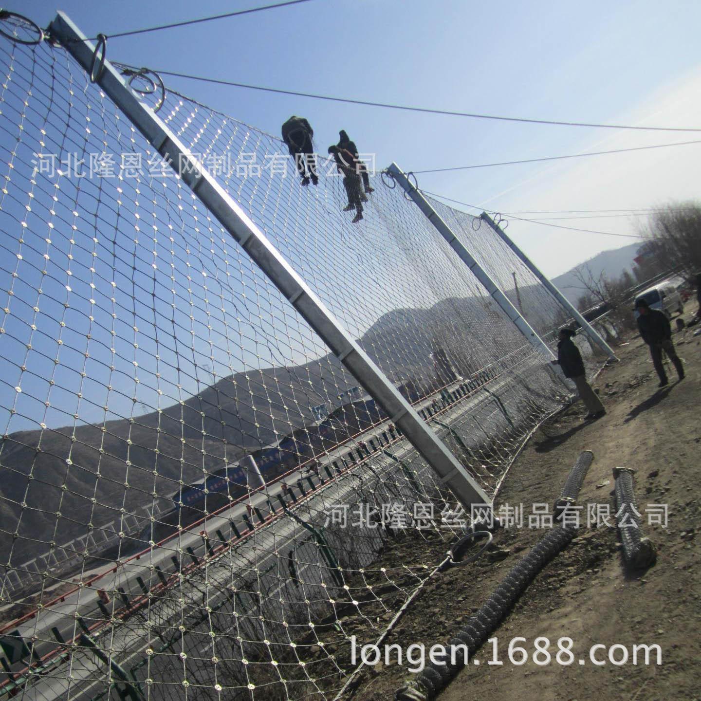 防护网_边坡防护网_高速公路边坡防护网示例图5