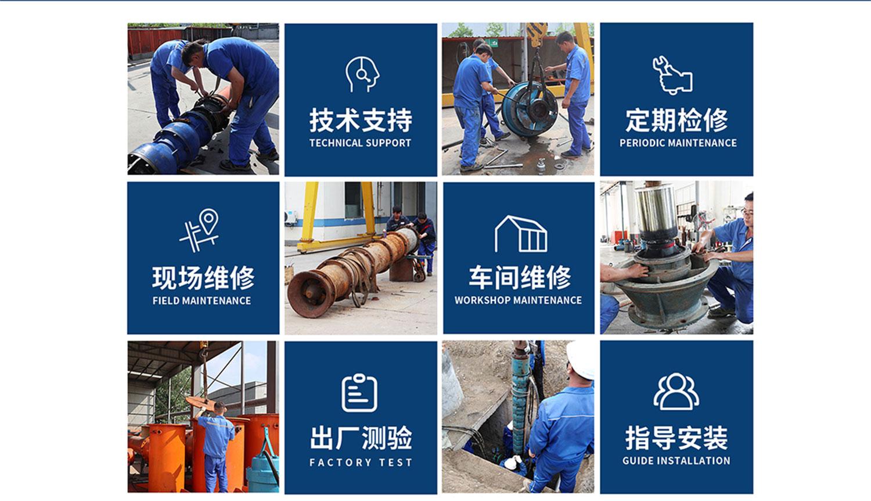 立式轴流泵厂家 轴流泵弯头式轴流泵 立式轴流泵保养示例图2