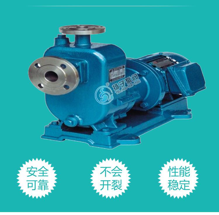 无泄漏防爆自吸泵制造商 ZCQ65-50-145自吸式不锈钢耐腐蚀磁力泵示例图4