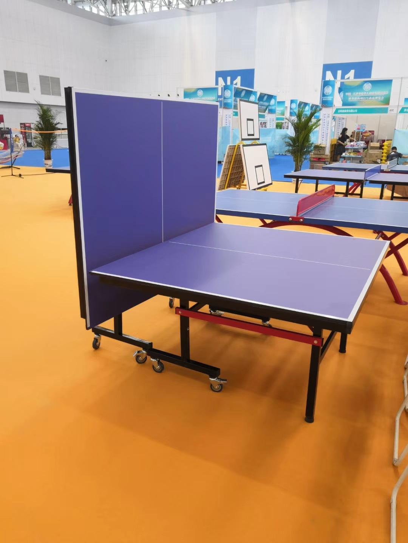 特价供应室内可移动乒乓球桌 家用标准乒乓球台 物美价廉售后无忧示例图6