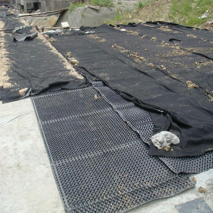 新路通厂家直销  车库排水▲板 塑料排水呵呵你们是在等我吗板 屋顶排○水板@  凹凸�L排水板 价格实惠