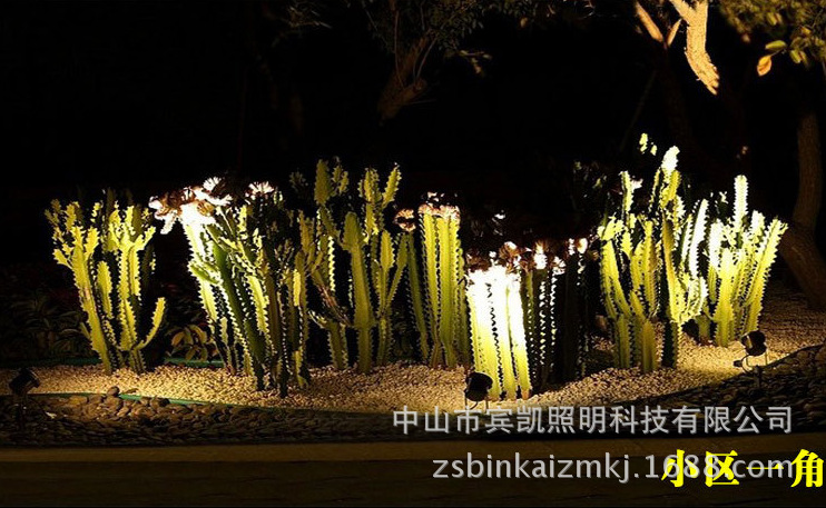 LED投射灯3w6w户外防水地插灯 草坪投射灯圆形插地灯花园射树灯示例图13