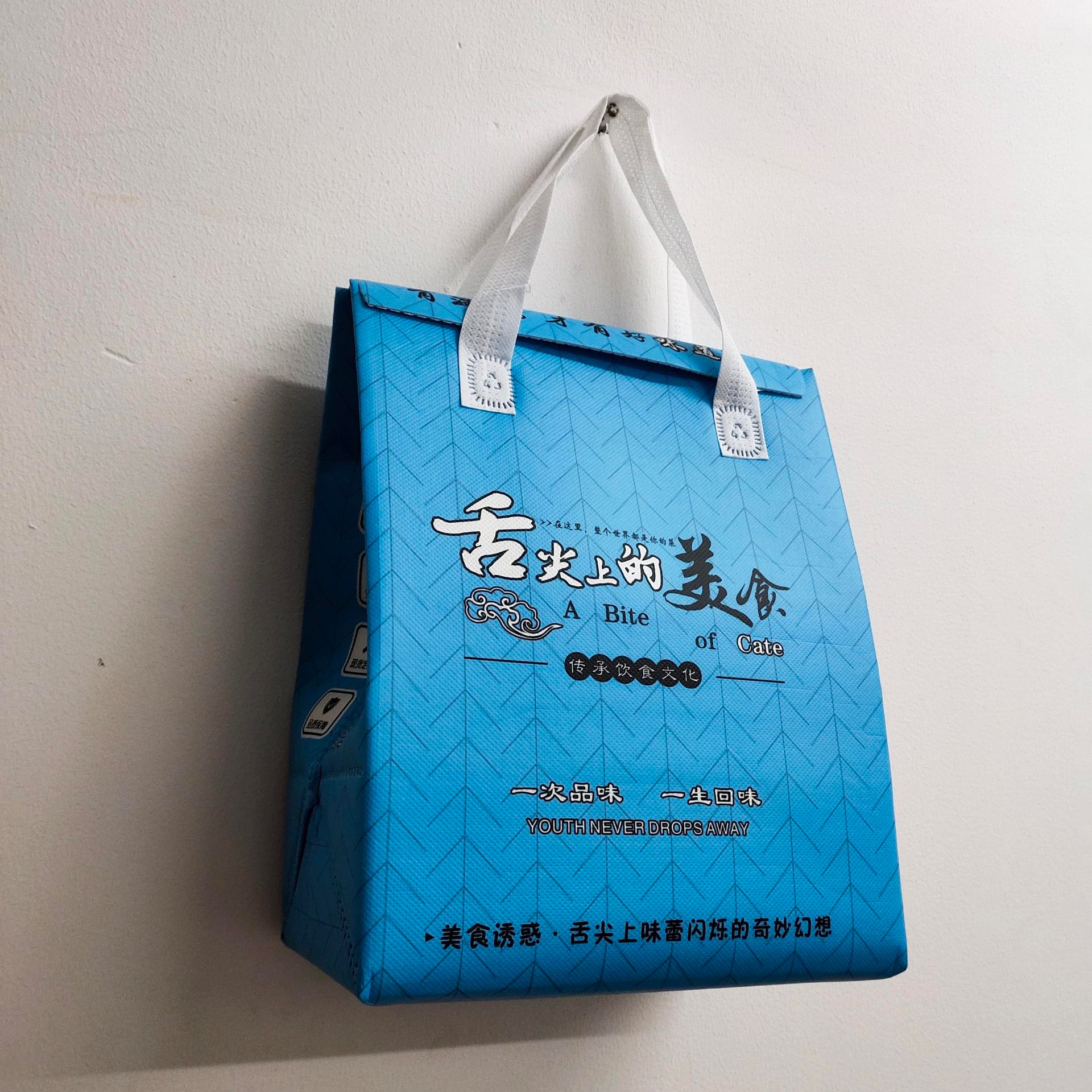 BW-6002廠家專業定制生產無紡布保溫立體袋、鋁膜保溫袋、珍珠棉保溫袋、保溫外賣袋、購物袋、環保袋、帆布袋、棉布袋