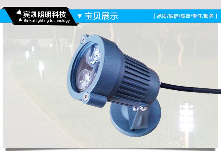 LED投射灯3w6w户外防水地插灯 草坪投射灯圆形插地灯花园射树灯示例图1
