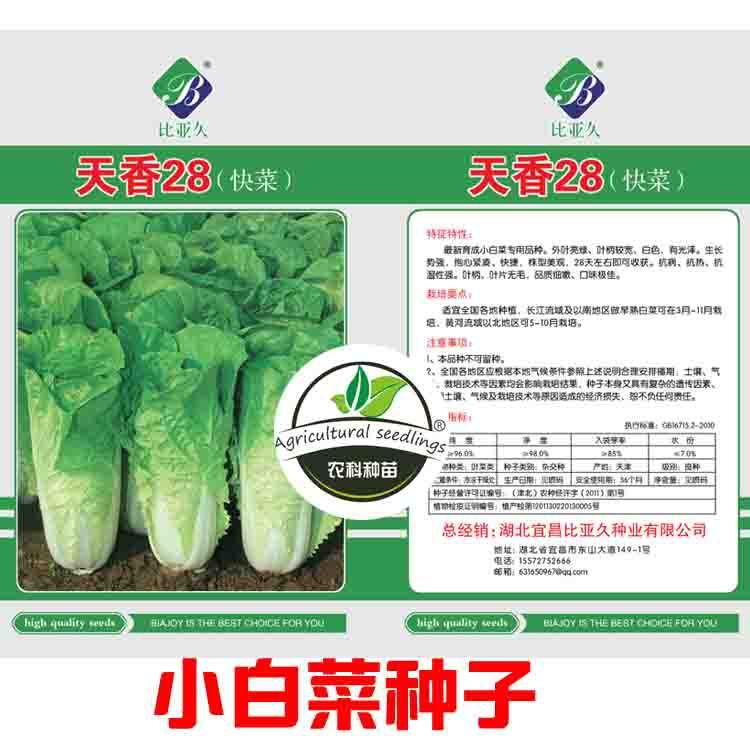 寿光白菜种子生长快,有机,美味,抗病,耐热和耐湿白菜种子