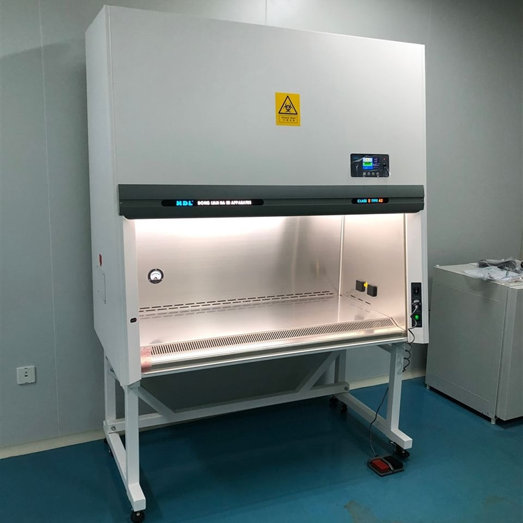 BSC-1100IIA2半排生物安全柜價格 二級實驗室生物安全柜廠家示例圖1