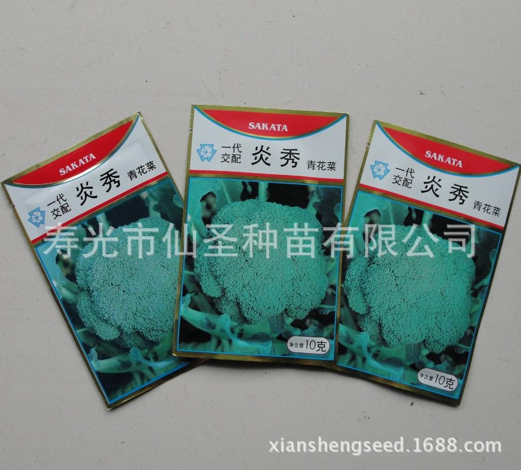 燕西兰花种子耐热,耐抽薹。日本坂田公司绿色花卉种子1