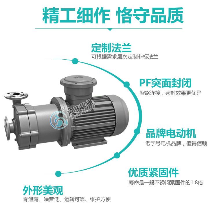 40CQ-20 不锈钢磁力泵生产厂家 不锈钢磁力泵选型及报价 304/316示例图9