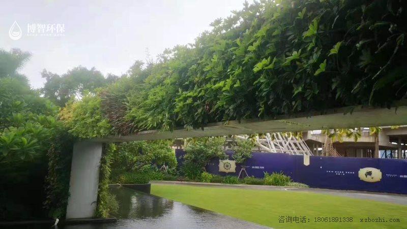 模块式种植盒 垂直绿化 立体绿化 生态植物墙,智能植物墙,植物墙种植盒,博智环保示例图5