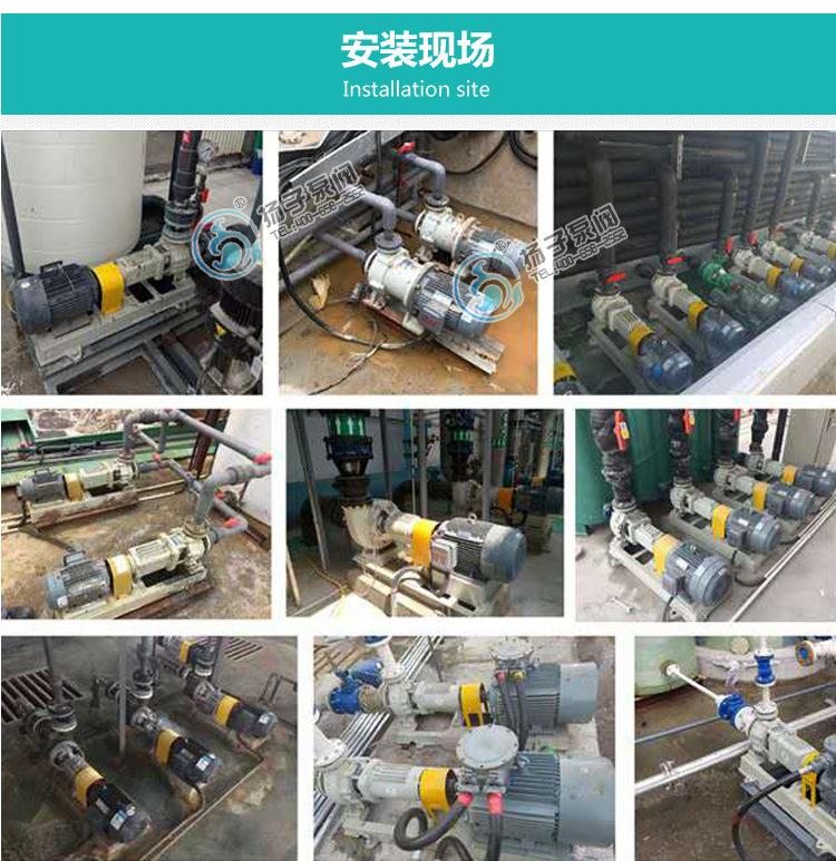扬子CQ普通型304不锈钢磁力泵 316防腐蚀磁力泵 无泄漏磁力驱动泵示例图14