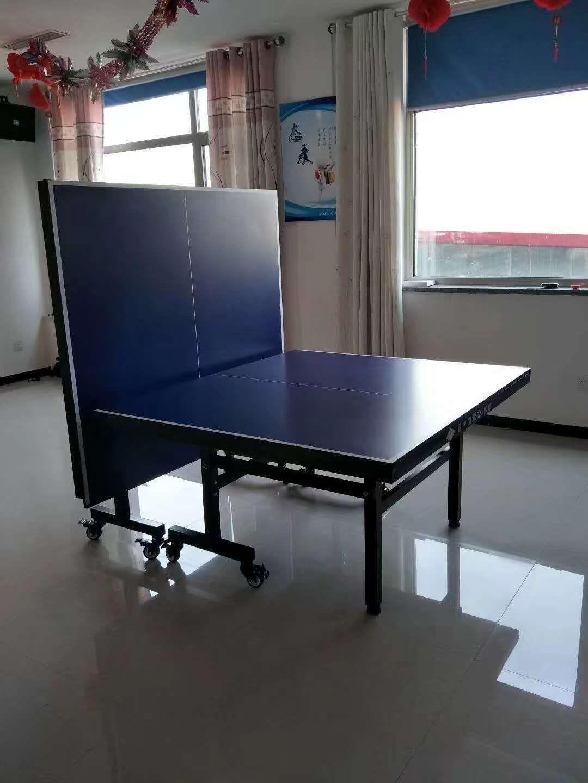 特价供应室内可移动乒乓球桌 家用标准乒乓球台 物美价廉售后无忧示例图3