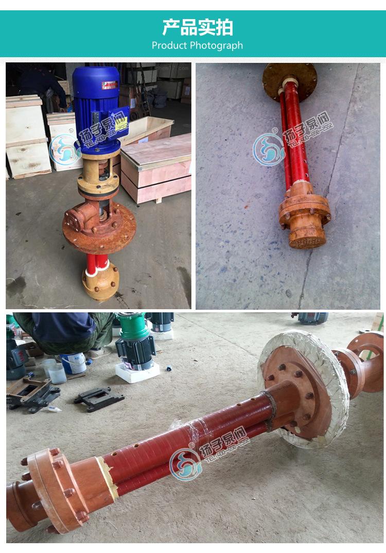 FSY立式液下泵 工程塑料耐腐清液排污泵 FSY氟塑料液下泵厂家批发示例图11